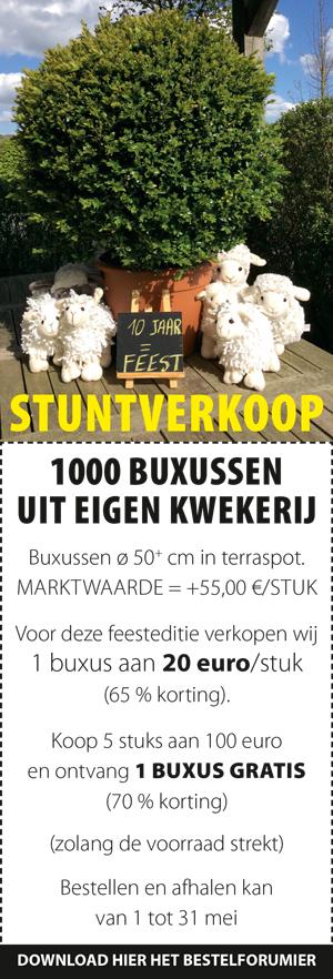 stuntverkoop_sidebar_website